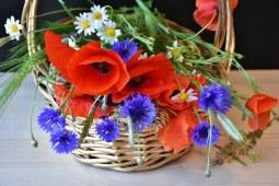 enviar flores de regalo, regalar ramo de flores para cumpleaños, flores para regalar, flores baratas de regalo, floristeria online